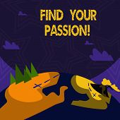 Text Sign Showing Find Your Passion. Conceptual Photo Encourage Showing Find Their Dream. poster