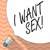 Conceptual Hand Writing Showing I Want Sex. Business Photo Text To Desire Sexual Intercourse Excitem poster