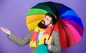 Weather Forecast Concept. Man Bearded Hipster Hold Colorful Umbrella. It Seems To Be Raining. Rainy  poster