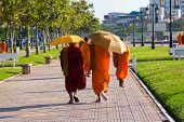 Monks Walking On The Street