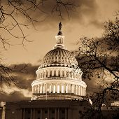 United States Capitol dome detail in sepia tones with dramatic sky and silhouette of tree branches