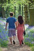 Amante joven pareja caminando felizmente cogidos de la mano en woods bluebell