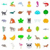 Vital Icons Set. Cartoon Style Of 36 Vital Icons For Web Isolated On White Background poster