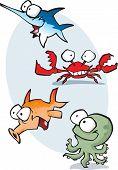 Marine Cartoons