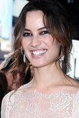 LOS ANGELES - NOV 8:  Berenice Marlohe at the Hollywood Walk of Fame Star Ceremony for Javier Bardem at El Capitan Theater on November 8, 2012 in Los Angeles, CA