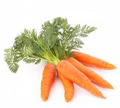 stock photo of vegan  - Carrot vegetable with leaves isolated on white background cutout - JPG