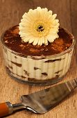 Italian Dessert Tiramissu