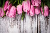 Pink Tulips Over Wooden Table