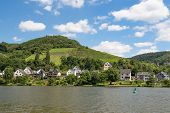 pic of moselle  - Houses and vineyards along river Moselle in Germany - JPG