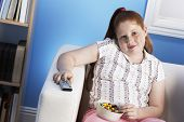 picture of couch potato  - Portrait of a smiling overweight girl with remote control eats junk food on the couch - JPG