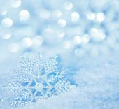 Winter background. Snowflakes on snow