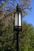Gothic Lamp Post