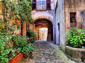 stock photo of leafy  - Arched cobblestone street in a Tuscan village - JPG