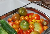 Tomato And Cucumber Harvest In Kitchen Sink
