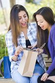 Two Young Adult Mixed Race Women Looking Into Their Shopping Bags Outside on Bench.
