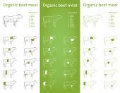 Organic Beef meat parts