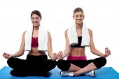 Two Young Girls Doing Yoga At Gym