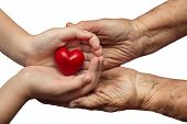 image of empathy  - little girl and elderly woman keeping red heart in their palms together isolated on white background symbol of care and love - JPG