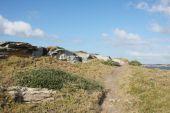 Narrow Coastal Walking Track