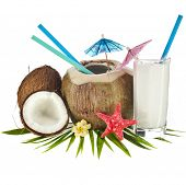 Coconut drink with a straw and palm leaf isolated on white background