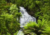 picture of triplets  - Waterfall in Victoria - JPG