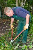 Gardener With Cutter