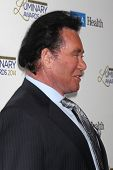 LOS ANGELES - JAN 22:  Wayne Newton at the UCLA Head and Neck Surgery Luminary Awards at Beverly Wil