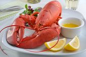 Boiled lobster on a plate with butter, lemon, and lettuce