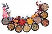 Medicinal herb selection also used in witches magical potions over white background.