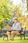 Senior gentleman working on laptop seated on wooden bench in park looking at camera