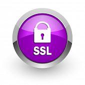 ssl pink glossy web icon