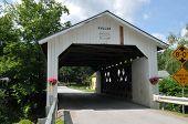 Fuller Bridge