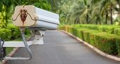 stock photo of cctv  - Security camera CCTV hangs in garden for surveillance