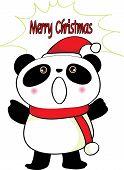 a Merry Christmas panda
