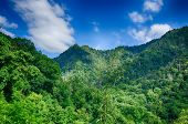 pic of gatlinburg  - chimney tops mountain in great smoky mountains - JPG