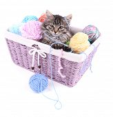 Funny gray kitten and balls of thread in wicker basket, isolated on white