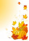 Illustration of Autumn Pumpkin and leaves background