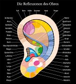Ear reflexology german description black