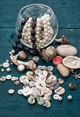 seashells and sewing accessories and supplies