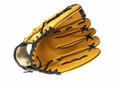 Baseball glove without ball