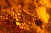 Crystals On Abstract Orange Background. Extreme Closeup. Macro