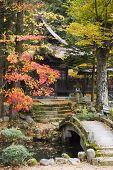 Japan, Takayama, Hokke-ji Temple garden with stone bridge, Autumn