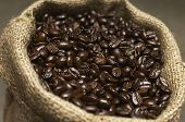 Coffee beans in sack, close-up