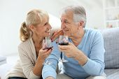 Cheerful senior couple cheering with glass of wine