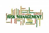 Risk Management Word Cloud on White Background