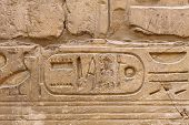 Ancient egypt hieroglyphs carved on the stone in the Karnak Temple, Luxor, Egypt On October 13, 2012