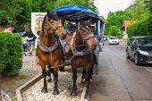 HOHENSCHWANGAU, GERMANY - 19 JUNE 2014: Tourists on a horse-drawn carriage at the Neuschwanstein Cas