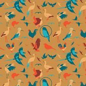 Animals Birds background