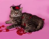 Striped Fluffy Kitten With Christmas Beads Lying On Pink
