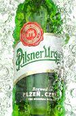 Pilsner Urquell pale lager beer in splashed water.